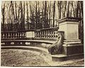Eugène Atget - Versailles, Bosquet de l'Arc de Triomphe - 1963.974.jpg