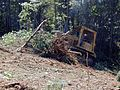 FEMA - 3842 - Photograph by Butch DuCote taken on 08-17-2001 in West Virginia.jpg