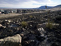 FEMA - 39773 - Burned subdivision in Colorado.jpg