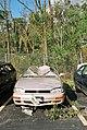 FEMA - 5133 - Photograph by Jocelyn Augustino taken on 09-25-2001 in Maryland.jpg