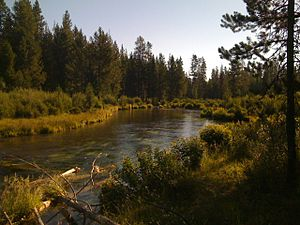 Fall River, Deschutes County, OR.jpg