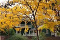 Fall color at the George Washington Ball House - panoramio.jpg