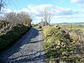 Farm track and public footpath - geograph.org.uk - 1712261.jpg