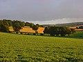 Farmland, Brightwalton - geograph.org.uk - 892046.jpg