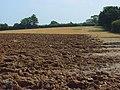 Farmland, Odiham - geograph.org.uk - 956249.jpg