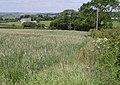 Farmland near Kitcham - geograph.org.uk - 459020.jpg