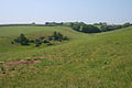 Farmland near Shillingham Manor - geograph.org.uk - 469882.jpg