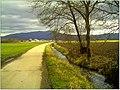 February Frühling Südwest Pastell Color - Master Landscape Rhine Valley 2014 Grand Cigogne blanc arrivee Ankunft des Großen Weißstorch - panoramio.jpg