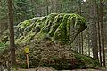 Felsgruppe Gugelhupfstein bei Heidenreichstein 02 NÖ-Naturdenkmal GD-077.jpg