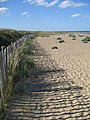 Fence by the dunes at Sizewell - geograph.org.uk - 866906.jpg
