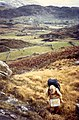 Fields of Breanlee - geograph.org.uk - 724757.jpg