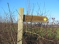 Fingerpost in the Howardian Hills AONB - geograph.org.uk - 331848.jpg