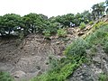 Flöz (coal layer) at Zeche Nachtigall - panoramio.jpg