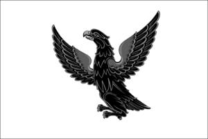 Nerchinsk - Image: Flag of Nerchinsk (Zabaykalsky Krai)