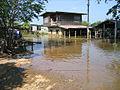 Flooding in Ban Phu November 2007 - panoramio.jpg