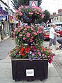 Flower baskets, Cleethorpes - DSC07264.JPG