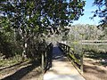 Footbridge at Lake Leon, Tom Brown Park.JPG
