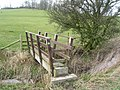 Footbridge below Walter Hill - geograph.org.uk - 1193345.jpg
