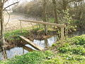 Footbridge by Black Leys wood - geograph.org.uk - 386570.jpg