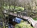 Footbridge in Shielhill Glen - geograph.org.uk - 1241394.jpg