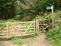 Footpath, Bovey Down, Devon - geograph.org.uk - 172201.jpg