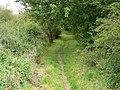 Footpath, Knook - geograph.org.uk - 1479266.jpg