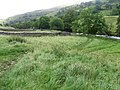 Footpath beside River Wharfe near Yockenthwaite - geograph.org.uk - 1490471.jpg