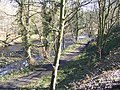 Footpath by the Don at Middlewood - geograph.org.uk - 1745040.jpg
