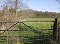 Footpath round Great Wood - geograph.org.uk - 398044.jpg