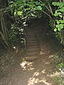 Footpath steps into Thomas Wood - geograph.org.uk - 524676.jpg