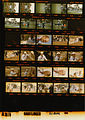 Ford A3879 NLGRF photo contact sheet (1975-03-30)(Gerald Ford Library).jpg