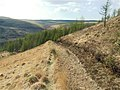 Forest path descends to Cwm Rhondda Fach - geograph.org.uk - 1286020.jpg