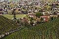 Frühling in Radebeul- Oberlößnitz (26480138926).jpg