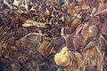 Frans post, paesaggio con boa constrictor, 1660 ca. 11 serpente.JPG