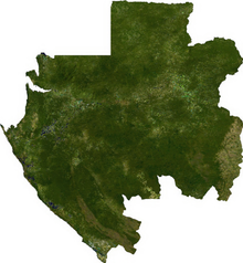 Satellite image of Gabon. Gabon sat.png