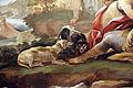 Galleria di luca giordano, 1682-85, adone ucciso dal cinghiale (vincita su amor carnale) 03 cani.JPG