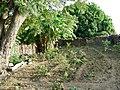 Garden dourtenga.JPG