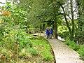Gardens, St. Neot, Cornwall - geograph.org.uk - 957135.jpg