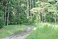 Garkalnes un Ropažu novadu robeža, Ropažu pagasts, Ropažu novads, Latvia - panoramio.jpg