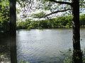 Gasperich - Kockelscheuer étang.JPG