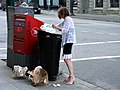 Gastown Recycler at Work.jpg