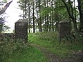 Gate Posts in woods - geograph.org.uk - 932150.jpg