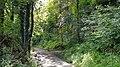 Geulhem-Groeve Nieuw Paradijsbergske (1).jpg