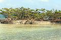 Gfp-florida-biscayne-national-park-sandbar-island.jpg