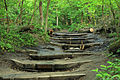Gfp-illinois-starved-rock-state-park-hiking-steps.jpg