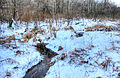 Gfp-wisconsin-madison-stream-in-winter.jpg
