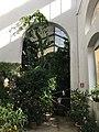 Giardino dei Semplici di Firenze 02.jpg