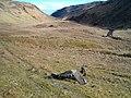 Gleann Domhain - geograph.org.uk - 132245.jpg