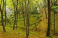 Gmina Zabierzów, Poland - panoramio (131).jpg