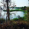 Gorewada Biodiversity Park 01.jpg